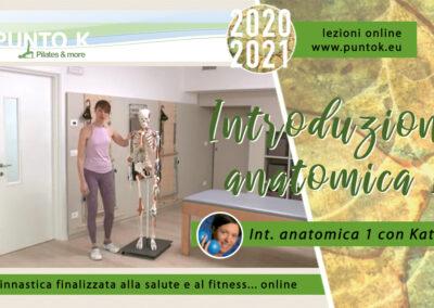 Introduzione anatomica – parte 1 06 min